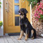Arabella steht vor der Haustür Wache